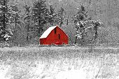 picture of farm land  - Winter barn scene at Gatineau Park black white and red - JPG