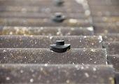 image of asbestos  - Screw protection stud on grey asbestos roof  - JPG