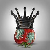 image of corrupt  - Corruption leadership concept as a roten tomato with mold wearing a rusted king crown as a business metaphor for a corrupt leader or oppressor slowly rotting away - JPG
