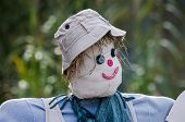 picture of scarecrow  - Scarecrow with grey hat and red smile - JPG