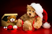 picture of mating bears  - A brown teddy bear wearing a Christmas hat sitting next to a box with a teddy bear peeking out over the edge isolated against a red and black background and three baubles in front of them - JPG