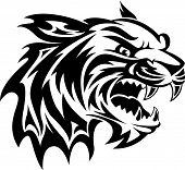 stock photo of wildcat  - Roaring tiger head tattoo design vintage engraved illustration - JPG