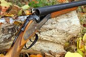 picture of shotgun  - A wooden retro shotgun with shot in autumn style - JPG