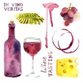 image of vines  - Bright watercolor wine design elements  - JPG
