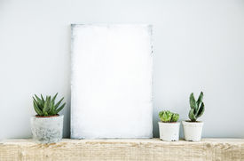 picture of paint pot  - scandinavian or american style room interior with painted frame and three succulents in diy concrete pot background for text - JPG