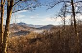 image of smoky mountain  - Smoky Mountains of North Carolina as the early morning fog lifts - JPG