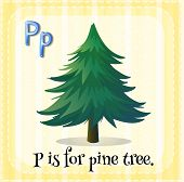 stock photo of letter p  - Flashcard letter P is for pine tree - JPG