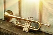 stock photo of trumpets  - Old worn trumpet stands alone against a window background outside a jazz club - JPG