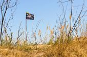 stock photo of pirate flag  - The black Jolly Roger pirate flag flutters in the wind over the hill - JPG
