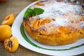 image of sponge-cake  - Sponge cake with apricot and powdered sugar - JPG