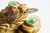 image of prosperity  - Chinese Money Frog with the coin symbolizing wealth and prosperity - JPG