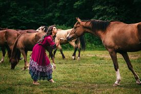 stock photo of shepherdess  - Beautiful gypsy in violet dress with horses - JPG
