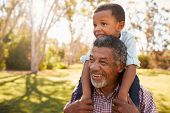 Grandfather Carries Grandson On Shoulders During Walk In Park poster