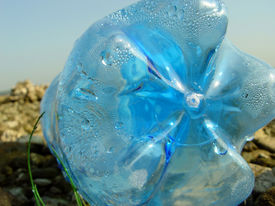 foto of non-biodegradable  - Blue PET bottle near river line - JPG