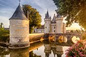 Castle Or Chateau Of Sully-sur-loire At Sunset, France. This Old Castle Is A Famous Landmark In Fran poster