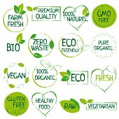 Green Set Of Organic Food, Farm Fresh, Natural Product, Zero Waste Elements, Labels, Logo For Vegan  poster