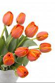 Постер, плакат: Букет из элегантных тюльпаны в вазе красивый кувшин