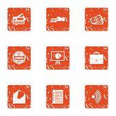 Money Choice Icons Set. Grunge Set Of 9 Money Choice Icons For Web Isolated On White Background poster