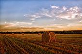 Haystack Harvest Spring Field Landscape. Haystack Agriculture Field Landscape. Agriculture Field Hay poster