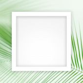 Empty White Frame Template On Soft Of Leaves Coconut Palm Tree Background, White Rectangle Frame Bla poster