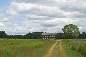 picture of molly  - A Summer view of the historic Molly Pitcher home in Monmouth Battlefield State Park in New Jersey - JPG