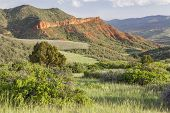 picture of collins  - Colorado mountain ranch in early summer  - JPG