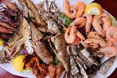 stock photo of squid  - Greek cuisine  - JPG