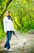 stock photo of west highland white terrier  - a woman with west highland white terrier - JPG