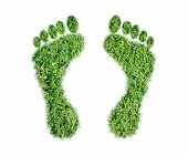 picture of carbon-footprint  - Green grass ecological footprint concept on over white background - JPG