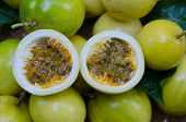 foto of passion fruit  - Passion fruits on ripe passion fruit bacground - JPG