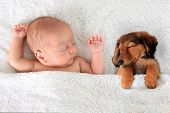 foto of sleeping baby  - Newborn baby and a dachshund puppy sleeping together - JPG