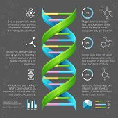 stock photo of genes  - Infographic template with DNA structure for medical and biological research - JPG