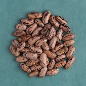 foto of pinto bean  - Top view of circle of pinto beans against blue vinyl background - JPG