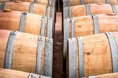 picture of wine cellar  - American oak barrels with red wine - JPG