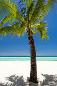 pic of boracay  - Island Boracay Philippines - JPG
