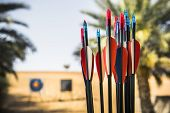 stock photo of longbow  - Outdoor nice place for archery with sand and trees - JPG