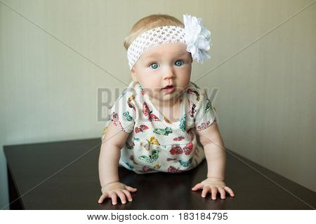Beautiful little girl crawls on all fours