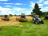 foto of hayfield  - two green combine harvesters and tractor harvesting a grain field - JPG