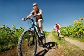 stock photo of exercise bike  - women relax biking on summer road - JPG