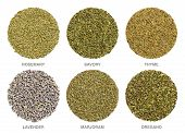Culinary Herbs For Herbes De Provence. Herbal Circles. Dried Rosemary, Savory And Thyme Are Always U poster
