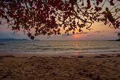 Beautiful Sunset Baltic Sea. Painting Sea Sunset. The Sea At Sunset. Amazing Sea Sunset. Sunset Sea  poster