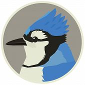 Blue Jay Bird Wildlife Vector Animals Round Frame Set poster
