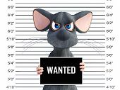 3d Rendering Of An Angry Cartoon Mouse Holding A Wanted Sign While Getting His Mug Shot. poster