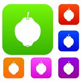Quince Fruit Set Icon In Different Colors Isolated Illustration. Premium Collection poster