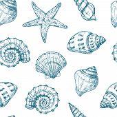 Seashells Seamless Pattern. Sea Shell Summer Ocean Texture. Nautical Starfish Repeating Vector Vinta poster