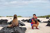Animal wildlife nature photographer tourist on Galapagos looking at Galapagos Sea Lion taking photos poster