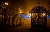 Urban park at night, romance, fog, lamps and light