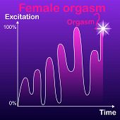 Schedule, The Concept Of Dependence To Achieve A Female Orgasm, Depending On The Excitement, The Dif poster