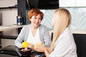 pic of only mature adults  - Happy adult woman with daughter on kitchen - JPG