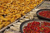 Drying corn and chilli peppers